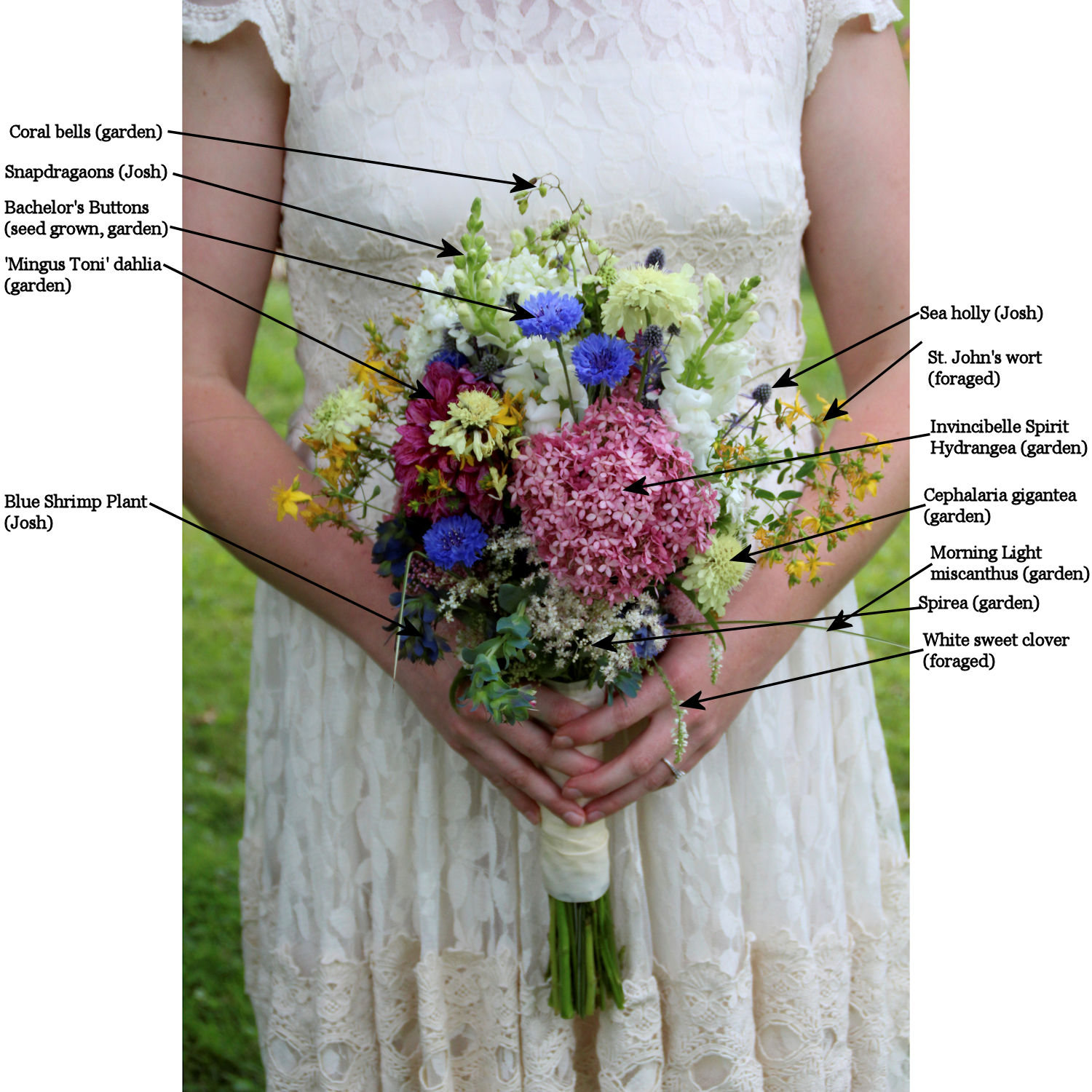 bride's bouquet labeled with all the flowers in it