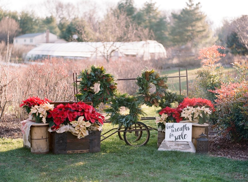 Winter on the flower farm (c) Audra Wrisley Photography