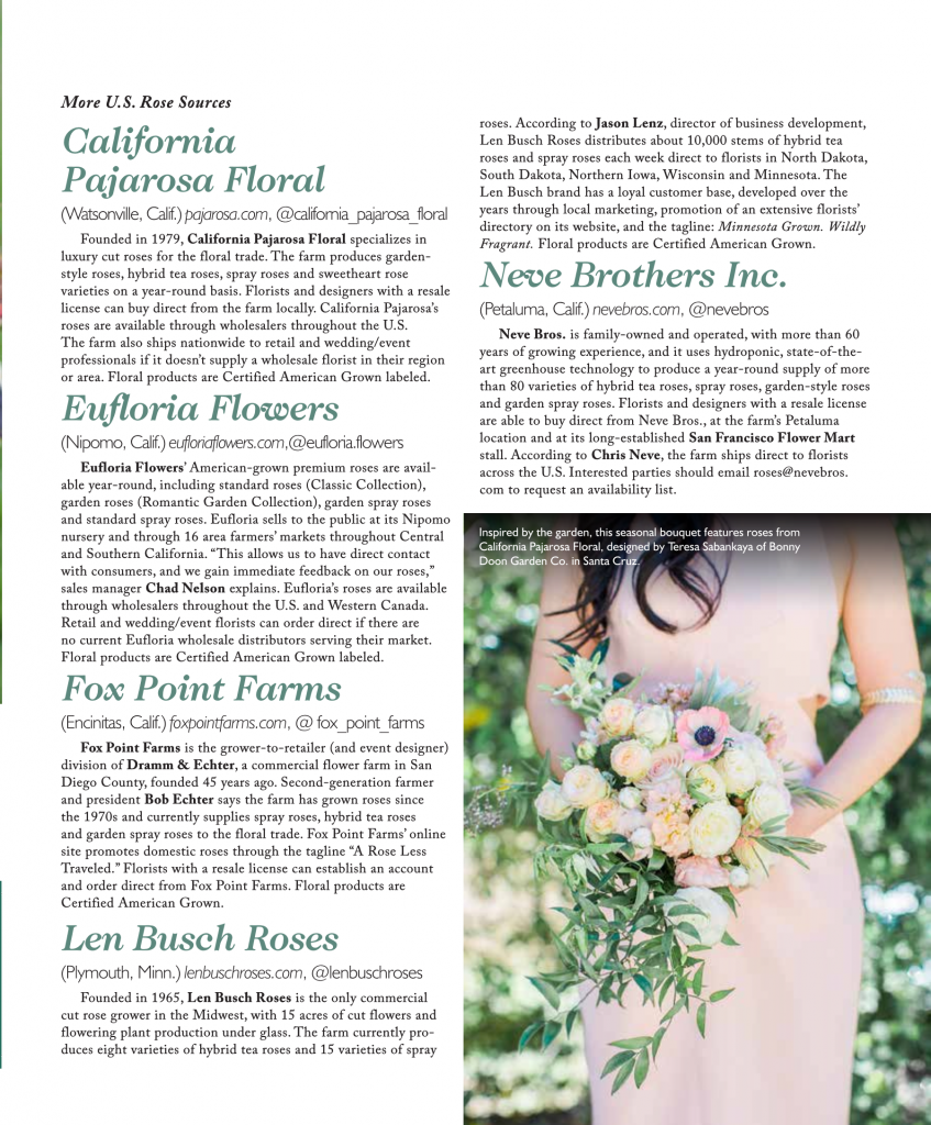 July 2018 Slow Flowers Journal American Beauty The Rose Report In